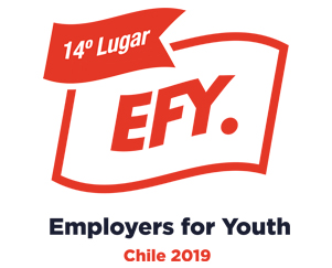 Employers for Youth - EFY 2019